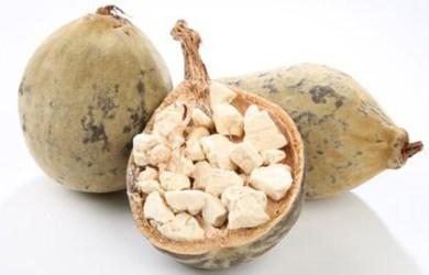 Baobab Fruit Benefits