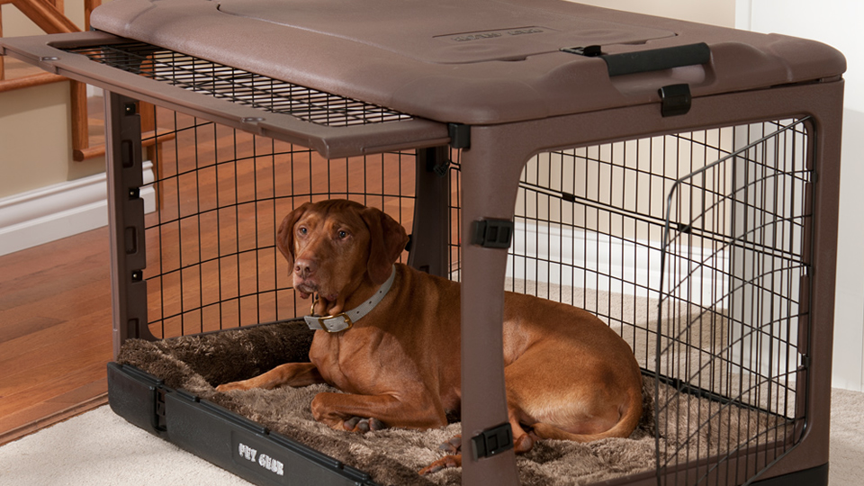 Top 7 Best Dog Cages Comparison 2018 Small Medium Amp Large