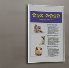 pet shop flyer wall