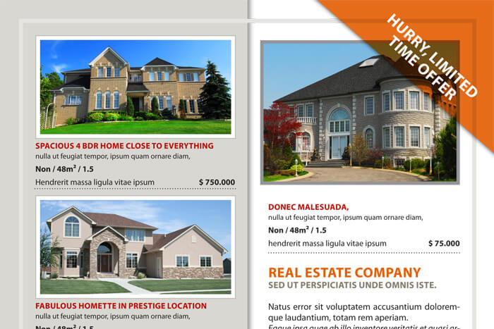 Real Estate Flyer Template Download Make Your Property Listing Flyer