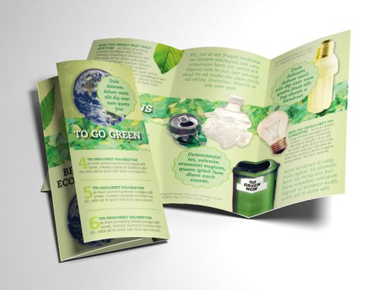 Green Brochure folded and opened