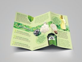 Green Brochure Template Preview Inside