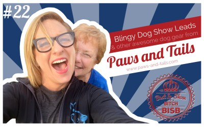 Blingy Dog Show Leads with Paws and Tails – Episode TWENTY-TWO