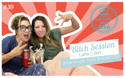 Bitch Session – What People Think Breeders Do