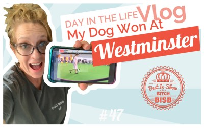 Day in The Life: My Dog Won at Westminster VLOG
