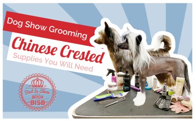 Dog Show Grooming: How To Groom a Chinese Crested and the Supplies You Need