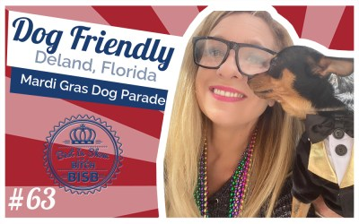 Dog Friendly Florida Events –  Dog Parade!