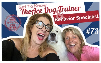 The Ace Dog Trainer – Dog Behavioral Specialist
