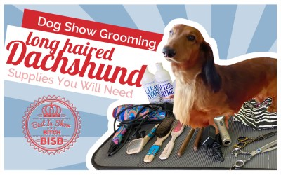 Dog Show Grooming: How to Groom a Long Haired Dachshund  & The Supplies You Need