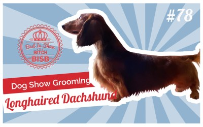 Dog Show Grooming: How to Groom a Long-haired Dachshund