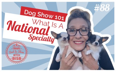 Dog Show 101 – What is a National Specialty Dog Show?