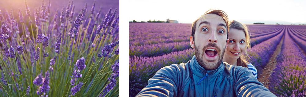 Bestjobers en Provence