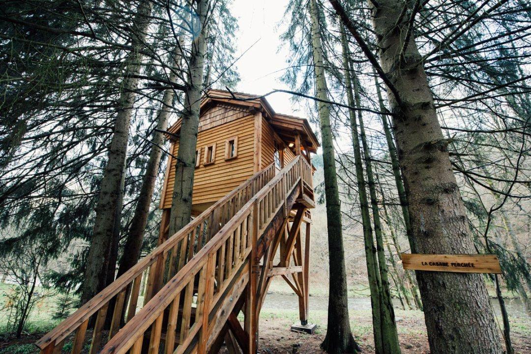 Cabanes dans les arbres belgique