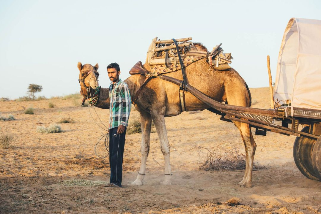 sortie chameau desert inde