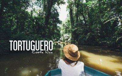 COSTA RICA | VOIR LES TORTUES À TORTUGUERO mais pas que…!