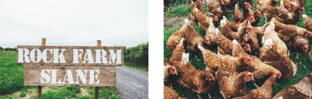 Rock Farm Slane, notre avis!