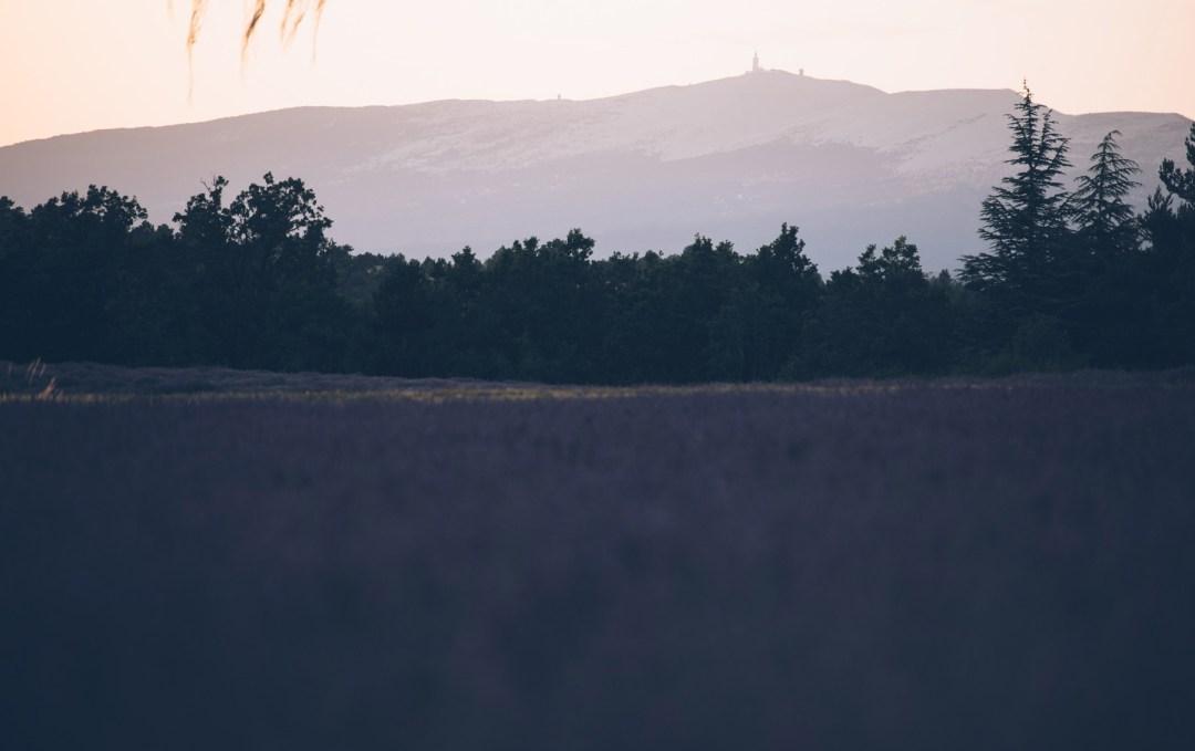 Mont Ventoux depuis St Jean de Sault