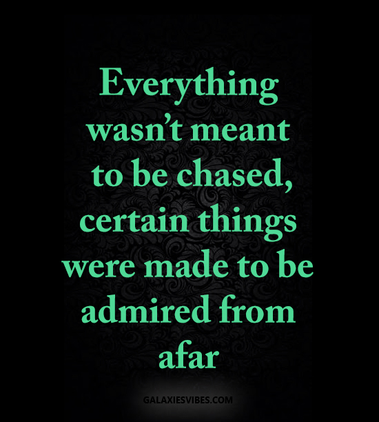 everything wasn't meant to be chased, certain things were made to be admired from afar