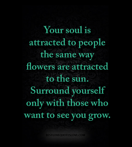 Your soul is attracted to people the same way flowers are attracted to the sun. Surround yourself only with those who want to see you grow.