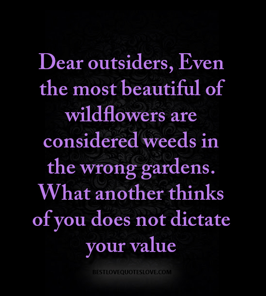 Dear outsiders, Even the most beautiful of wildflowers are considered weeds in the wrong gardens. What another thinks of you does not dictate your value