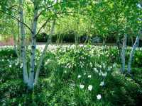 50 Most Stunning University Gardens and Arboretums ...