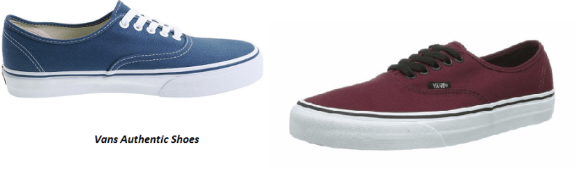 The Amazing Features of the Vans Authentic shoe