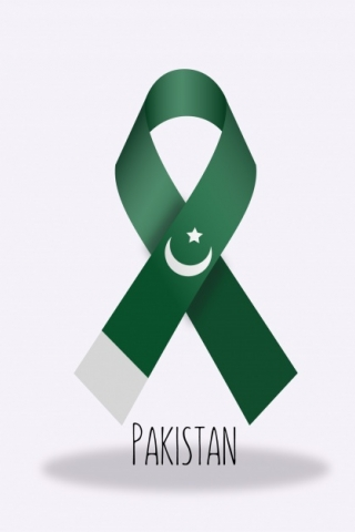 Hd Wallpaper For Android Mobile 5 5 Inch Pakistan Flag Ribbon Download Mobile Wallpaper