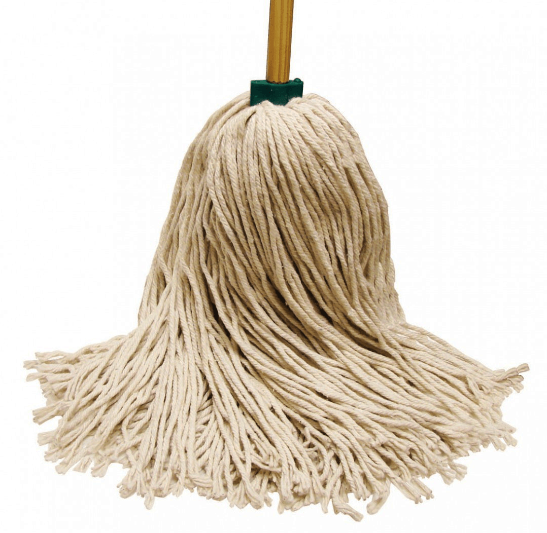 What does a Mop do  Best Mops