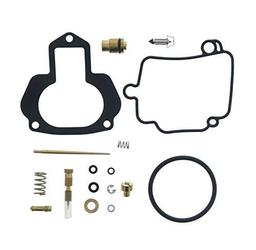 Top 25 Best Carburetor Repair Kits