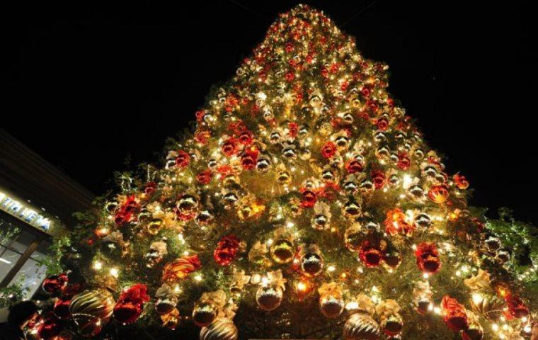 Χριστουγεννιάτικο δέντρο: Ιστορία,καταγωγή και η πρώτη εμφάνιση στην Ελλάδα