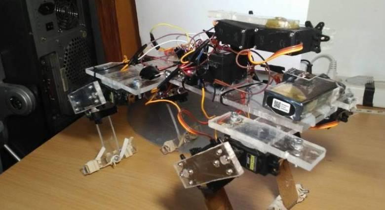 robot hood ρομπότ δασοφύλακας