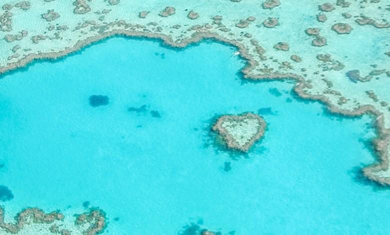 Heart Reef ύφαλος