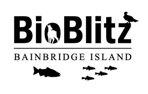 BioBlitz_Simplified_2016