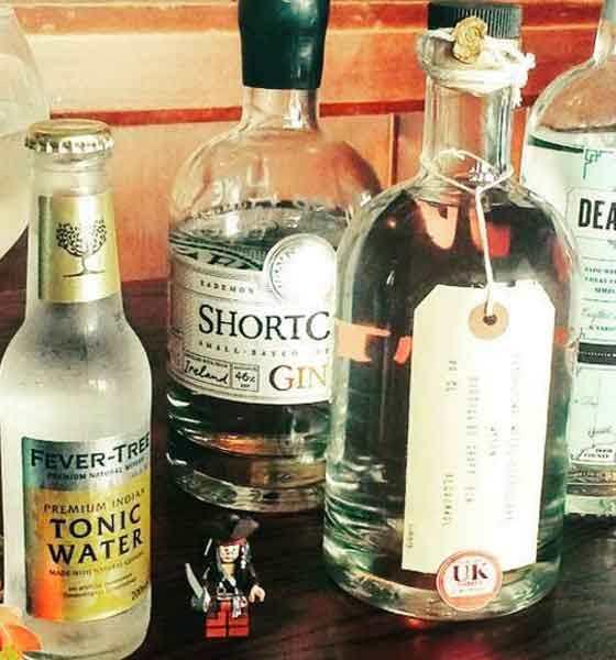 bristol gin bars