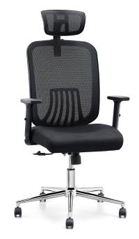 Cedric Ergonomic Mesh Office Chair