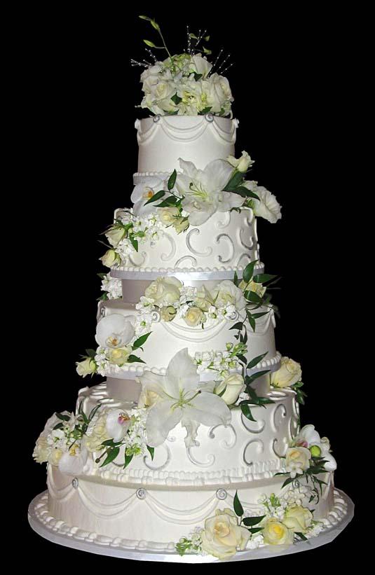 Wedding Cake Design Software