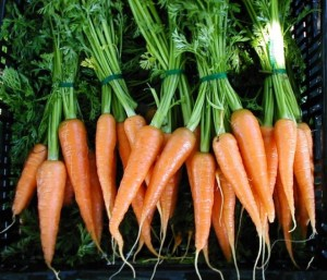 vegetable juicing,health,detox,carrots,recipes,cleansing,celery