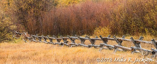Buck Rail Fence Oct13