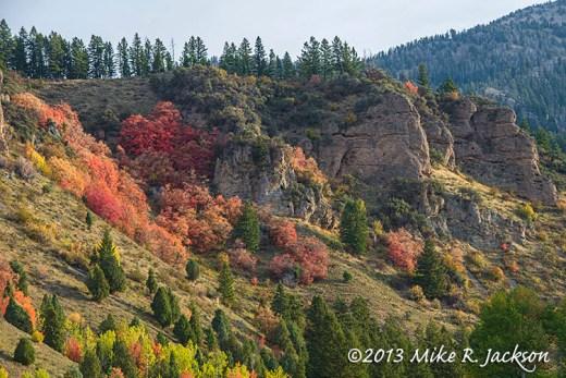 Sheep Canyon October 2
