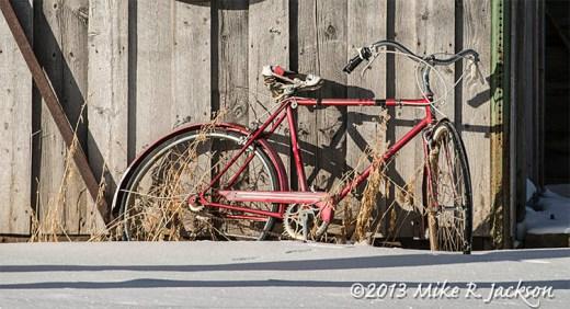 Web Mormon Bicycle Dec17