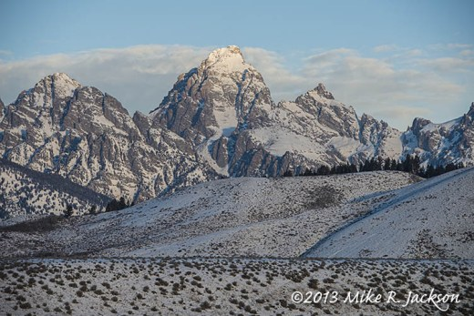 Web Blacktail And Tetons Dec17
