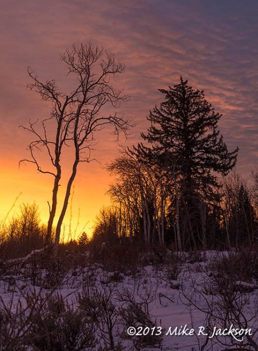 Web Sunrise Dec15