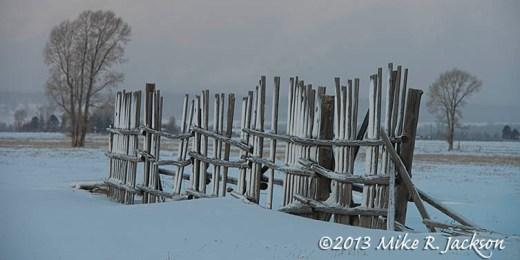 Fence Line Dec6