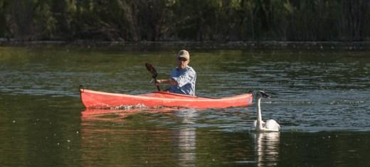 Web Bill Long Kayak