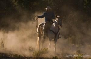 Web Rock Springs Ranch 2008