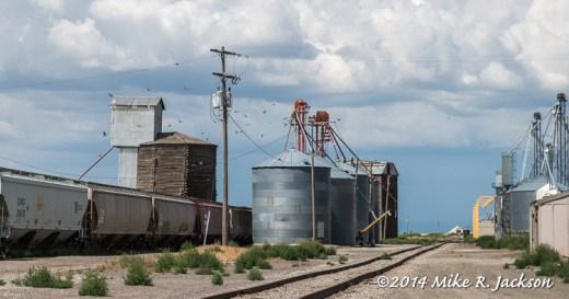Newdale Grain Elevators