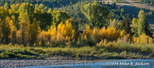 Fall on the Gros Ventre