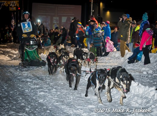 Sled Dog Mushers