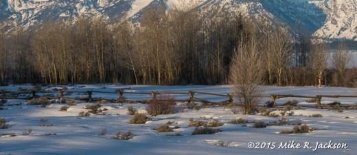 Moosehead Ranch Fence