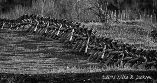 Buck Rail Fence